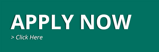 apply now Apply Now applybutton teal